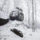 Kamenný hlídač