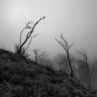 Mlha na Komáří Vížce
