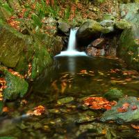 Černohorský potok v podzimu
