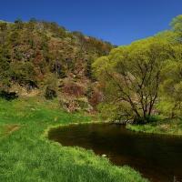 Jarní řeka Jihlava pod Mohelenskou hadcovou stepí II
