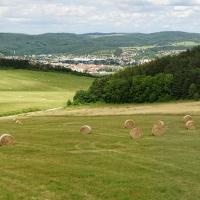 Český kras (V.)