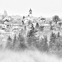 Přízemní mlha