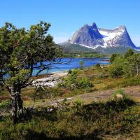 Před Narvikem