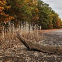 Podzim u Purkrabského rybníka