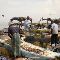 Fishmarkt v Negombu III