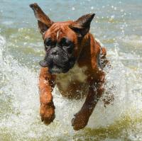 S větrem i vodou o závod:-)