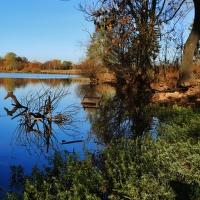 rybník Cígl