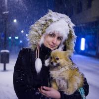Sněhulí