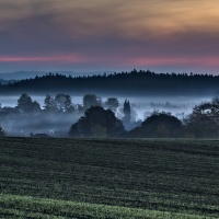 Mlžné podzimní ráno