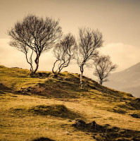 Kilbride | Isle of Skye