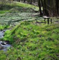 Pomalý příchod jara