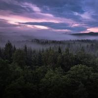 Podvečerní výhled k Hvozdu