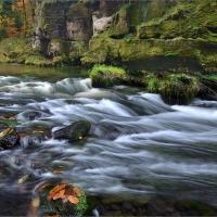 Kamenice - poslední barvy podzimu