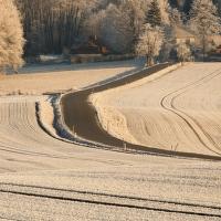Zimní linie