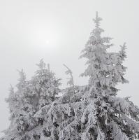 Když je na horách mlha ...