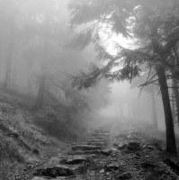 Mlha přede mnou, mlha za mnou...