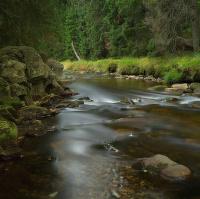 Šumava-Roklanský potok