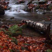 Podzimní voda l