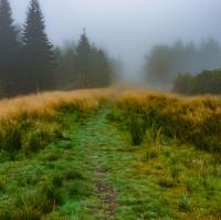 Mlha na hřebeni Orlických Hor