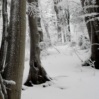 zima na valašsku 2