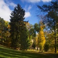 Kontrast podzimu