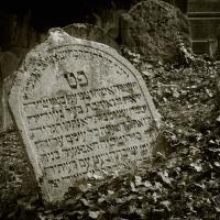 ze židovského hřbitova v Třebíči