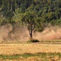 V prachu cest...