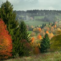 Než nám listí opadá a krajina zešedne..