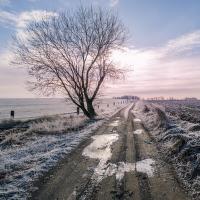 Mrazivé zimní ráno