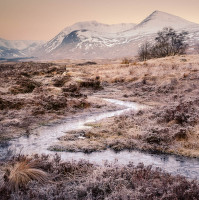 Frozen | workshop fotografie