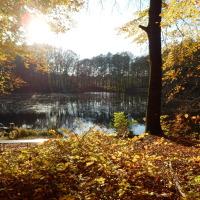 Podzim <3