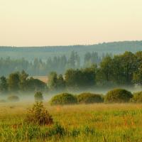 Okolí Padrťských rybníků - Brdy