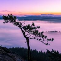 Mlhy pod Křížovým vrchem