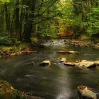 Podzimní Doubrava 2