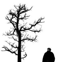čierne na bielom: jeseň života