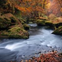 Podzim u Kamenice
