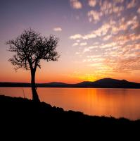 Samotář před setměním
