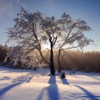 Zima na Hadím vrchu