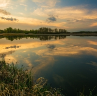Večerní odrazy na Bohdanečském rybníku