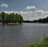 Ostrov na rybníku