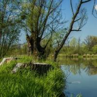 Pustějovský rybník