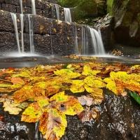 Podzimní kaskády