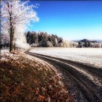 Omrzlá krajinka