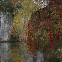 Podzim na Věžickém rybníku