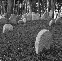 Židovský hřbitov 4