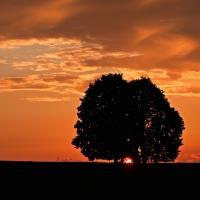 východ slunce #1