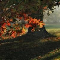 Podzim čaruje...