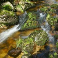 potok Jedlový