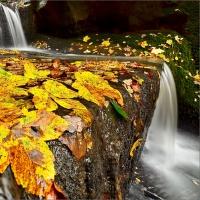 Kouzlo podzimu