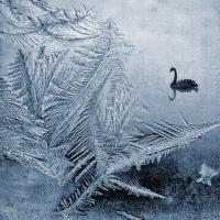 V království ledu